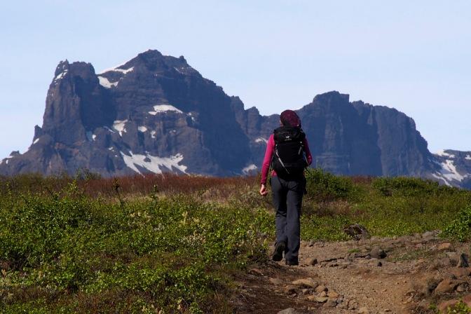 Hiking at Skaftafell