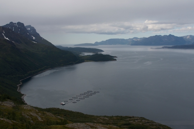 The view of Kvenangen Fiord from the pass above Oksfjordhamn.