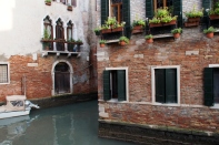 Venice window boxes.