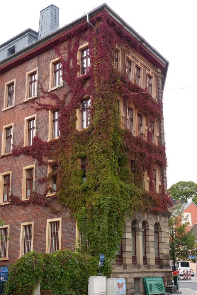 A building in Hof slowly being reclaimed by nature.