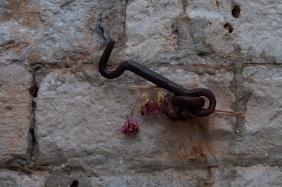 Gate hook at one of the entrance gates in Dubrovnik.