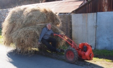 Bringing the hay.