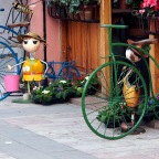 Shkodra Bicycle City