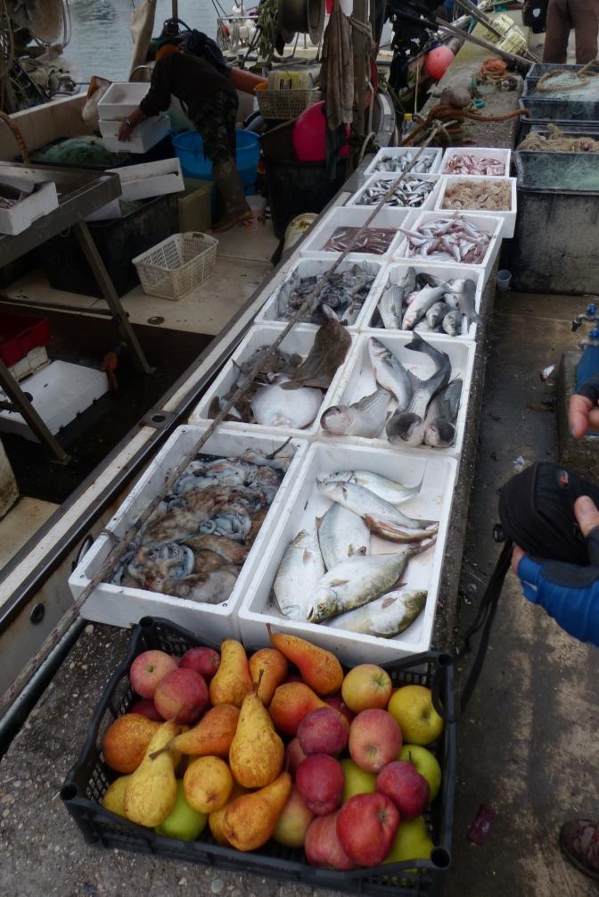 Chioggia fish market.