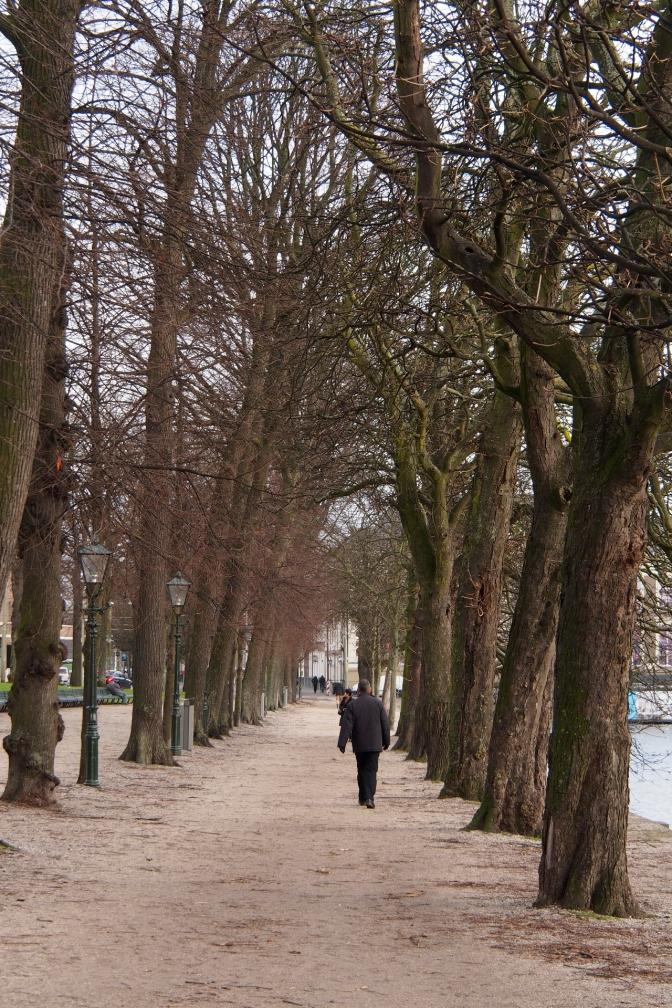 Den Haag path.