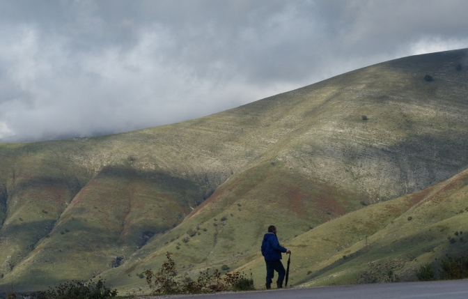 A shepherd watching over his flock on the road through Mt. I Gjer' pass.