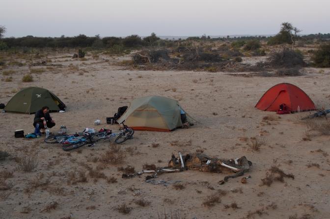 Dead camel camp.
