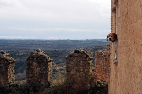 Dog at the monastery.