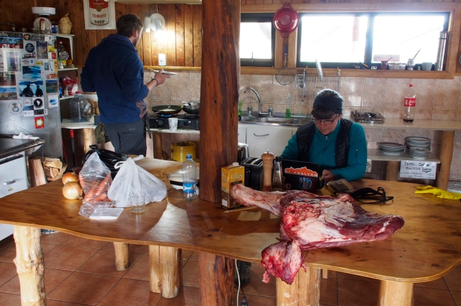 Kitchen camp with a quarter of beef we bought with other travellers.