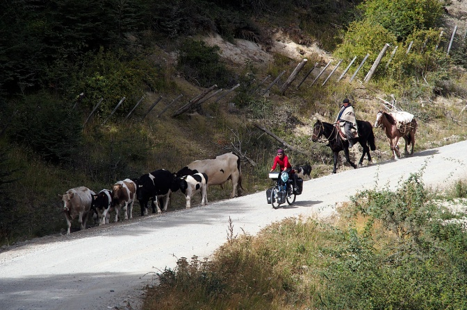 Traffic is light on the Carretera Austral.