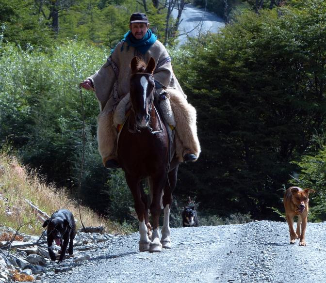 Gaucho on the Carretera north of Villa O'Higgins.