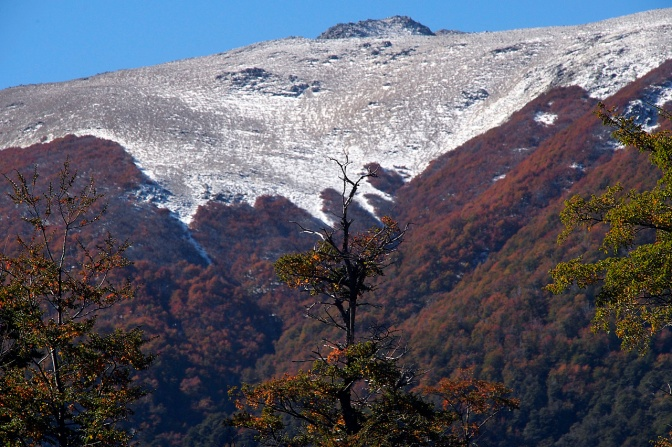 Fall colours on the lower slopes and winter in the alpine along the 7 Lakes Route.