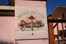 Wine Museum at Bodega San FelipŽé.