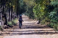 Cycling between wineries in MaipϜ.
