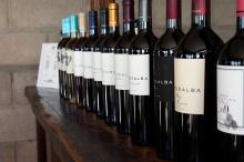 The offerings at Bodega Tempus Alba.