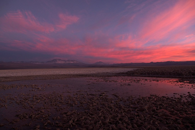 Sunset reflected in a pool on the Salar De Atacama.