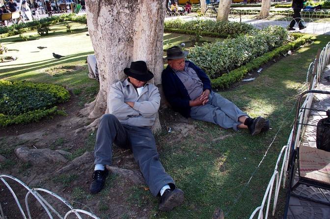 Having a nap in Plaza 14 de Septiembre, Cochabamba.