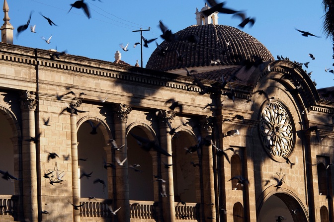 Pigeons at the Metropolitan Cathedral in Cochabamba.