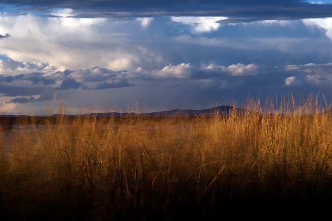 Sky and reeds on Lake Titicaca near Uros.