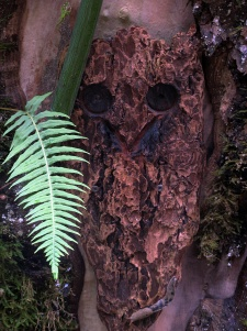 A mask carved from a piece of bark.