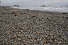 Ruby Beach looking south.