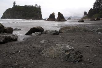 Ruby Beach sea stacks.
