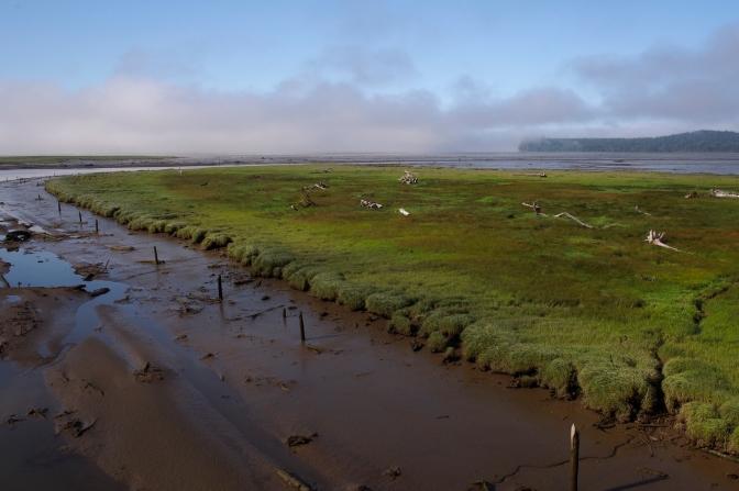 Tidal flats in North Bay near Markham, WA