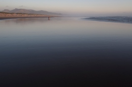 Nehallem Beach, OR