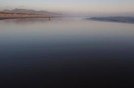 Nehallem Beach, OR