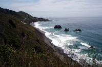 The Shoreline Highway brought us back to the northern California Coast.