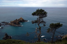 The coast south of Mendocino, CA.