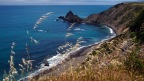 California: Freaky and Fabulous