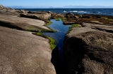Tidal pools to explore along shore.