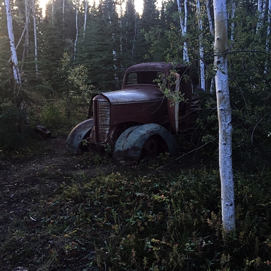Old jalopy being reclaimed by the forest.