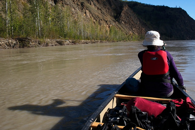 Below the White River, the Yukon becomes a muddy River.