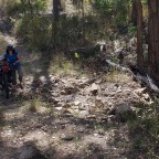 About a Horse Trail And Its Trials