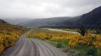 Molesworth Muster Trail