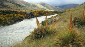 The Clarence River