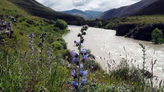 The Acheron River